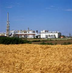 Wheat field with electric plant behind